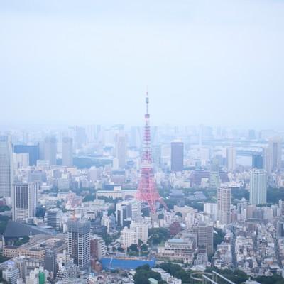 「淡い雰囲気の東京タワー周辺」の写真素材