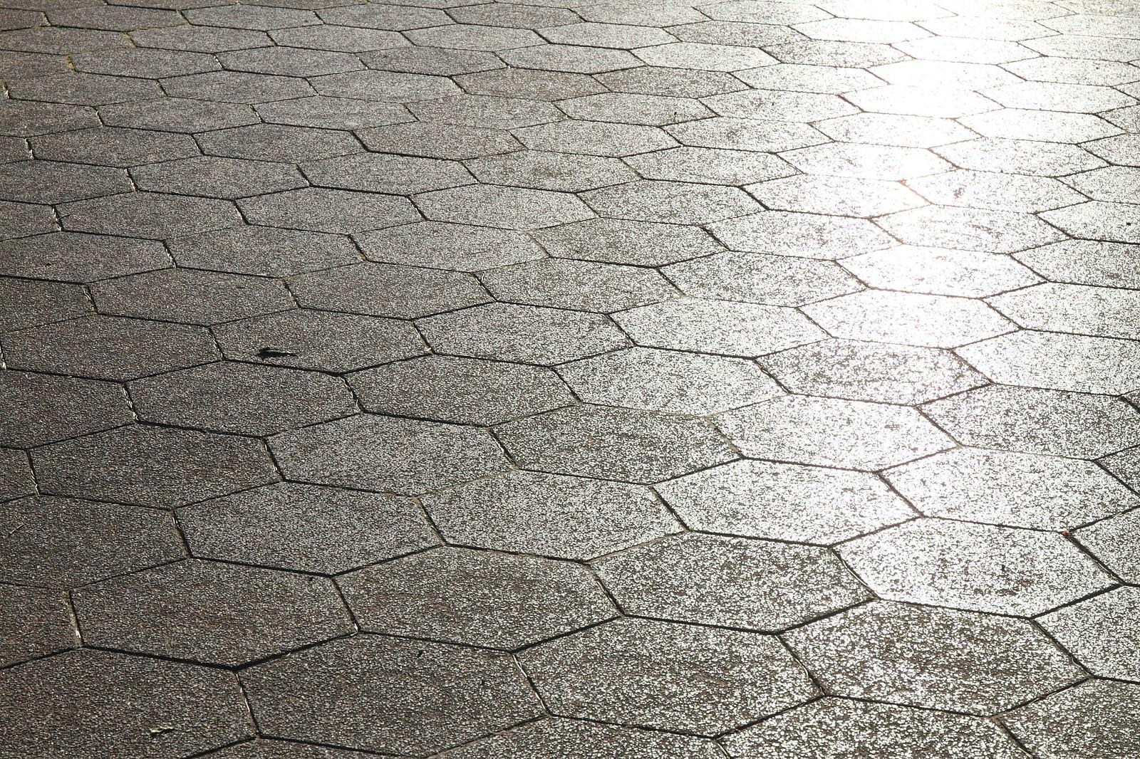 「光が差し込む道路」の写真