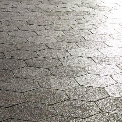 「光が差し込む道路」の写真素材