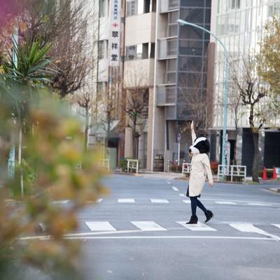 「横断歩道は手を上げて渡りましょう」の写真素材