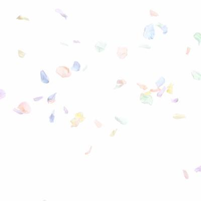 祝福のフラワーシャワーの写真