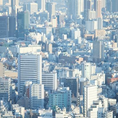 競争社会しのぎを削る東京のビル群六本木方面の写真