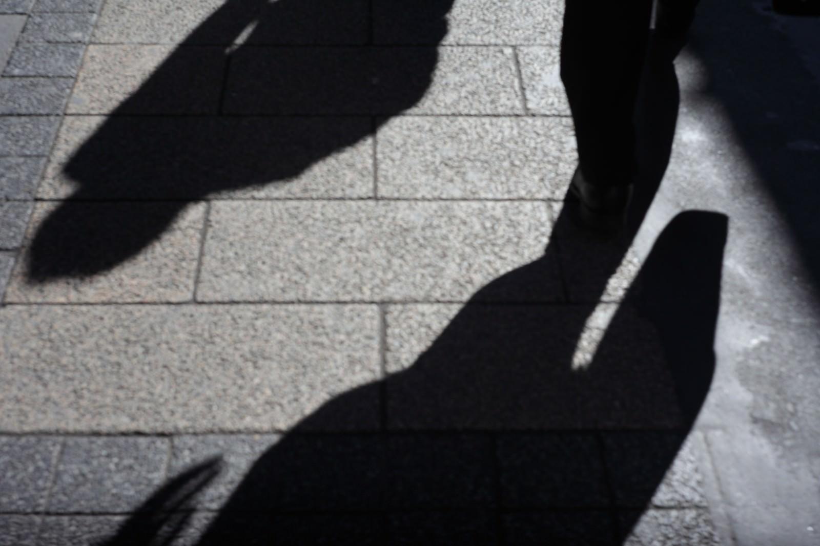 「道路に照らされた忍び寄る影」の写真
