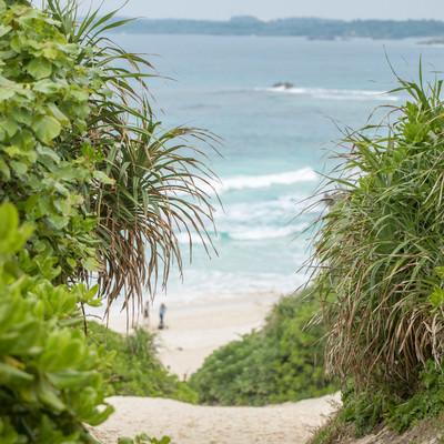 海へと続く坂道の写真