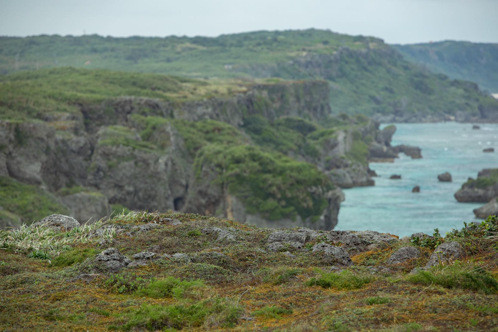 「断崖絶壁(宮古島)」の写真