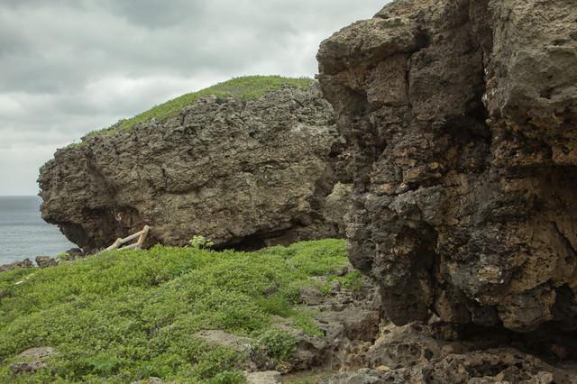 海岸沿いのゴツゴツした岩(宮古島)の写真