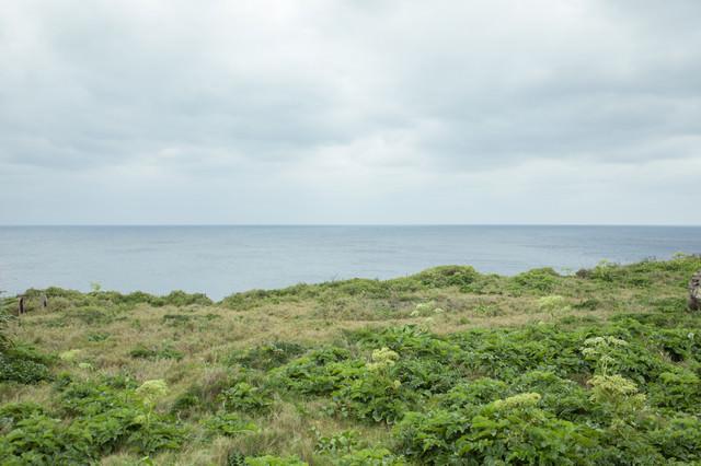 曇り空、島と海の写真