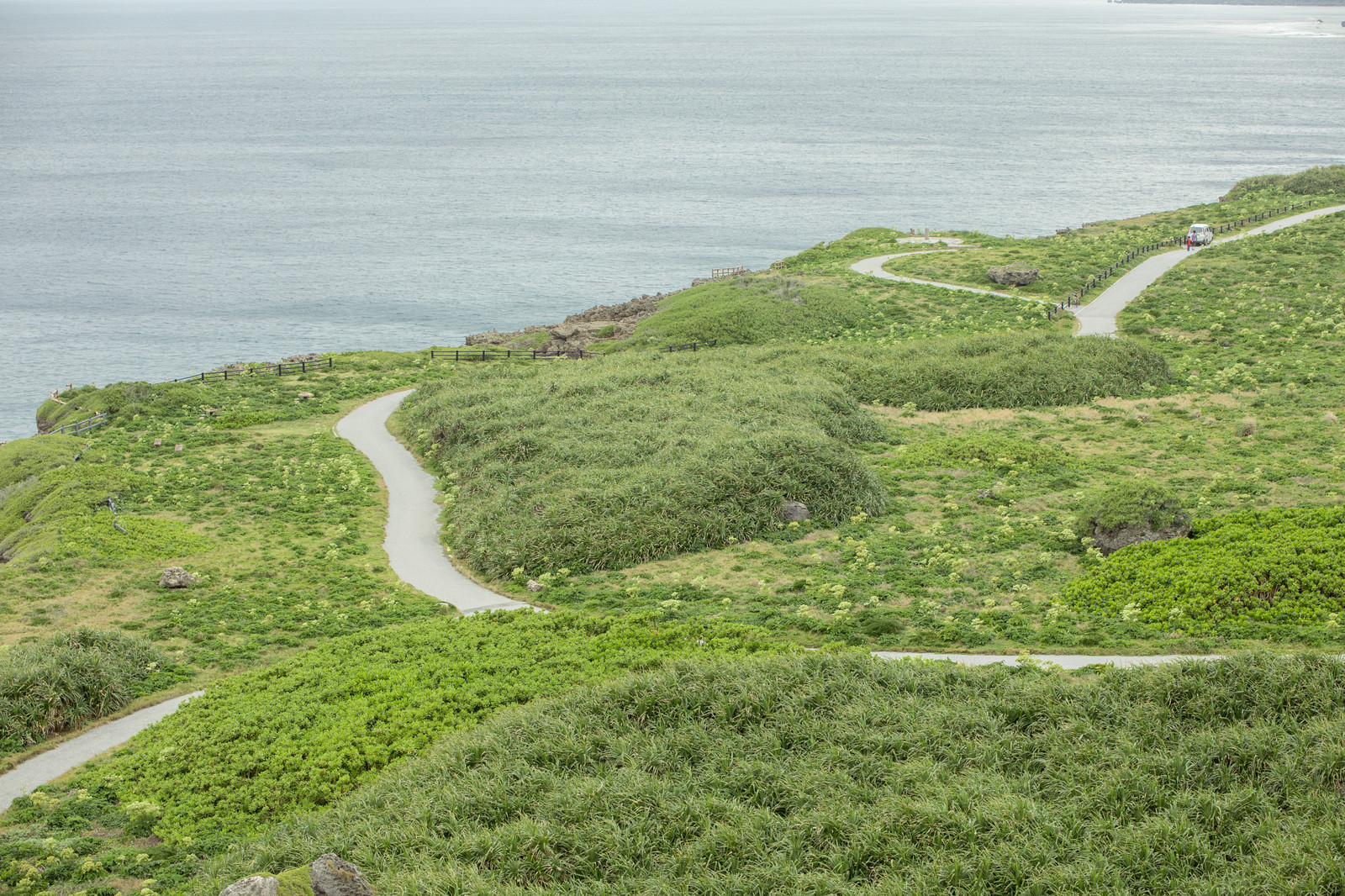 「宮古島の東平安名崎岬の遊歩道」の写真