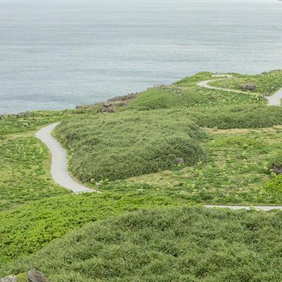 宮古島の東平安名崎岬の遊歩道の写真