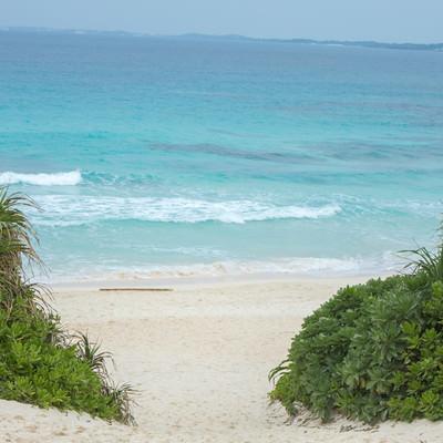 宮古島の砂山ビーチへ向かう道の写真