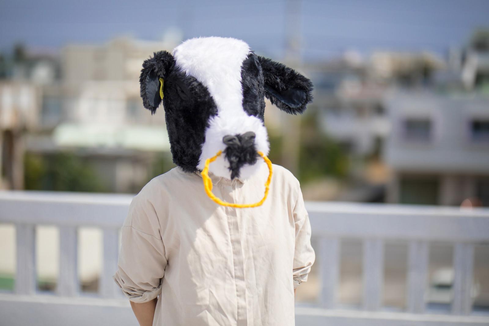 「屋上で牛に告白された」の写真[モデル:古性のっち]