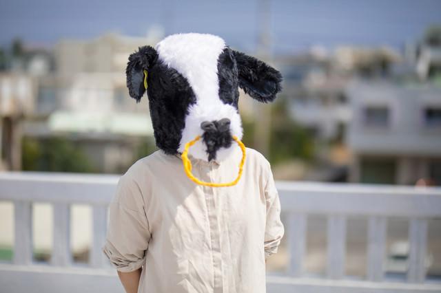 屋上で牛に告白されたの写真