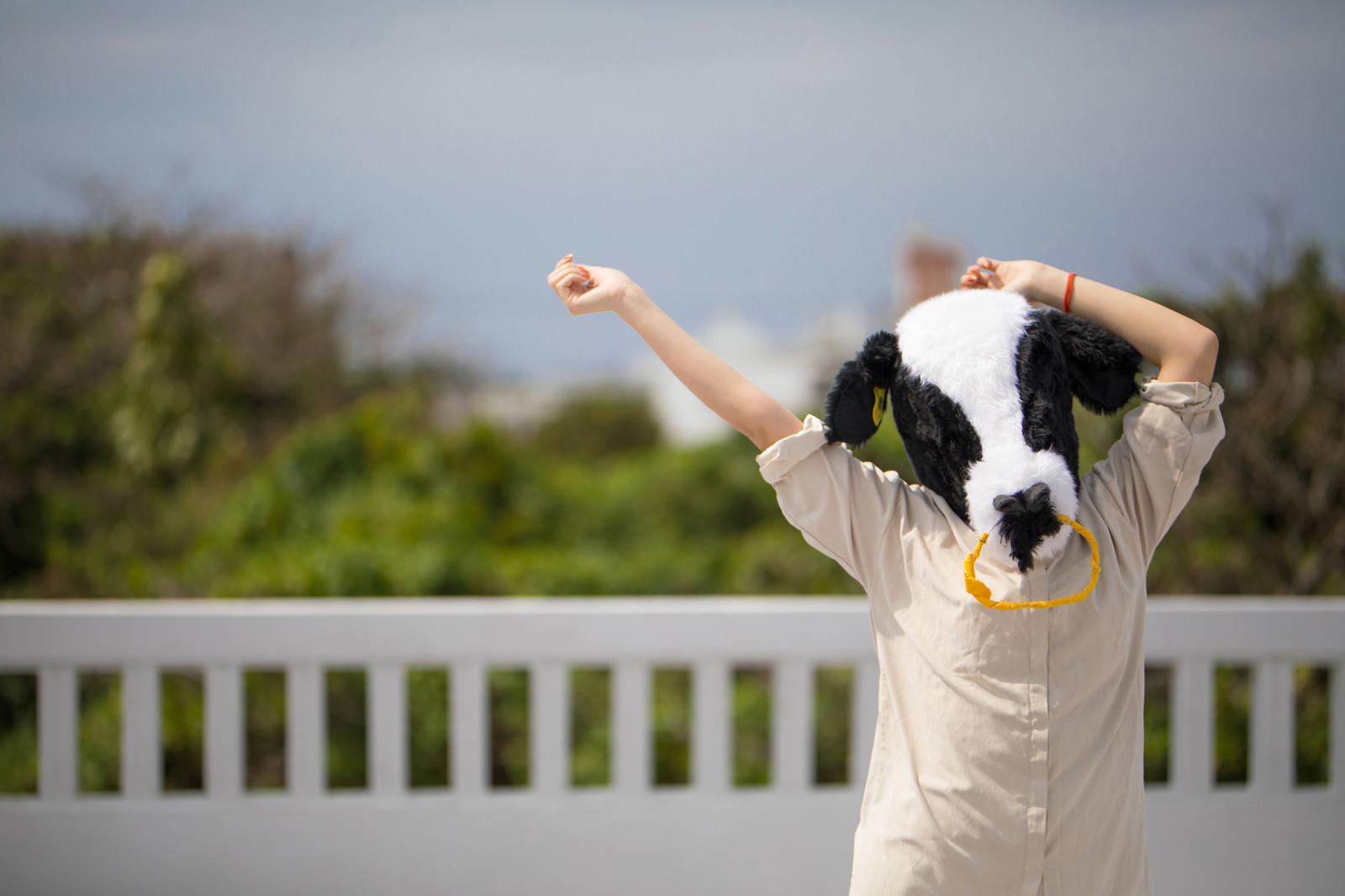 「伸びをするエト牛」の写真[モデル:古性のっち]