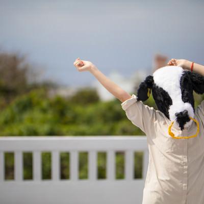 伸びをするエト牛の写真
