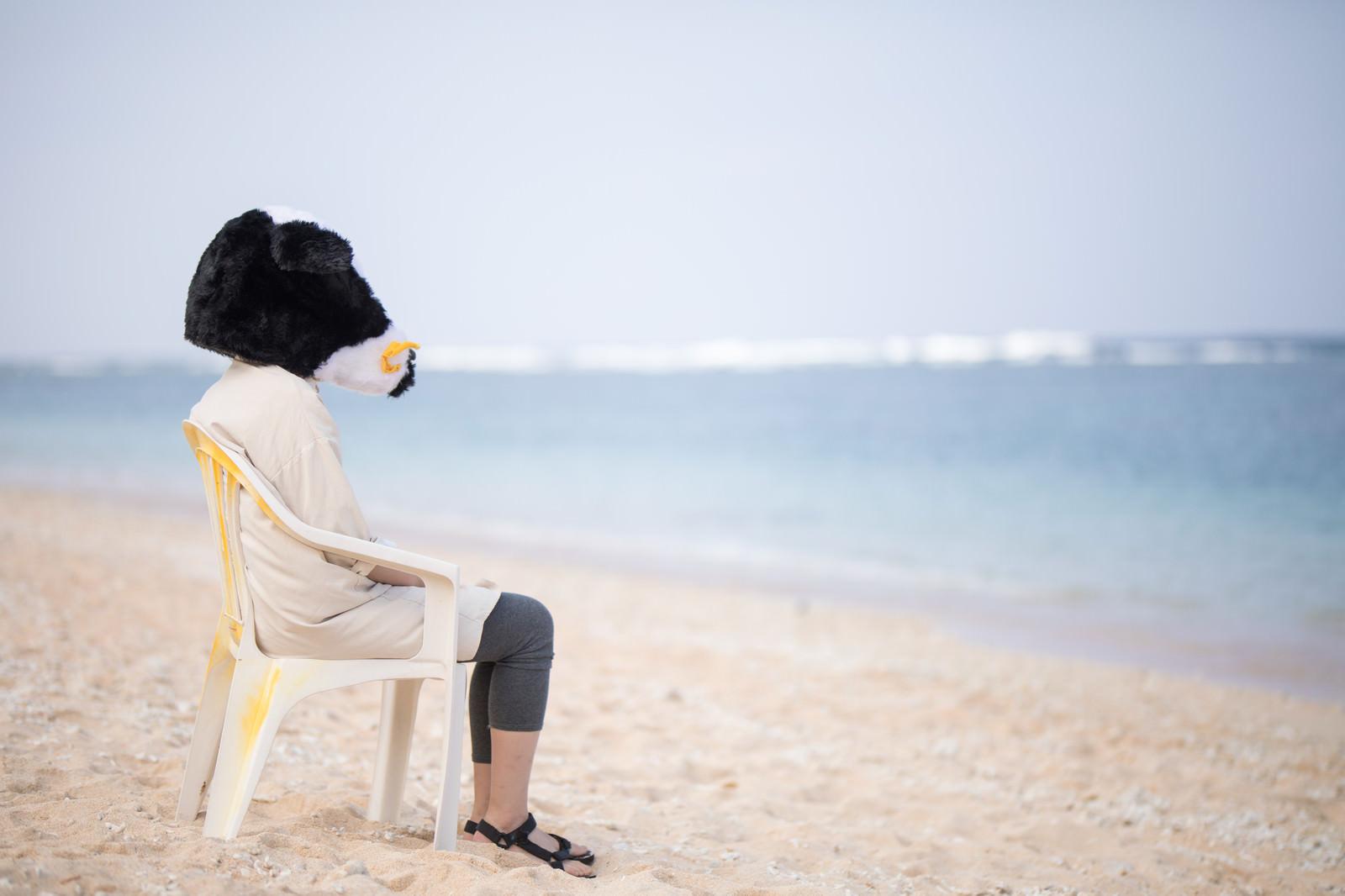 「宮古島の美しい海を見て失恋の傷を癒やす牛ガール」の写真[モデル:古性のっち]