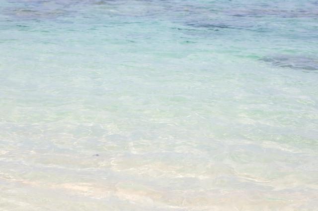 透き通る美しい海の写真