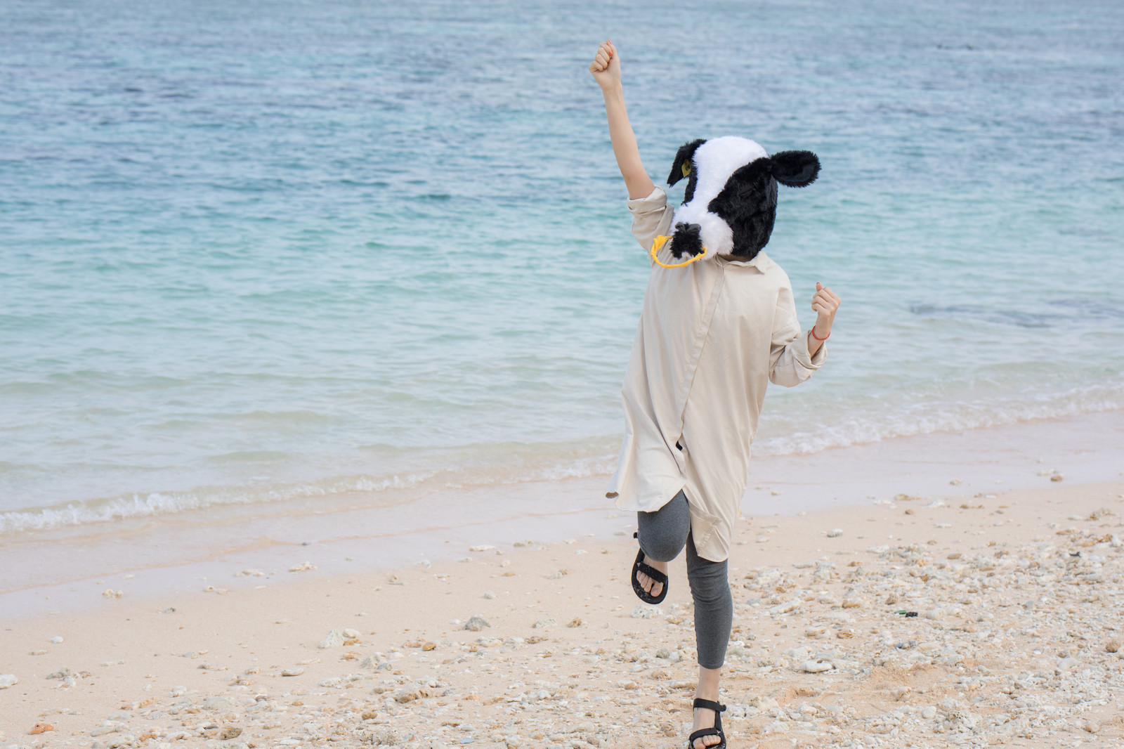 「砂浜で元気いっぱいの牛ガール」の写真[モデル:古性のっち]
