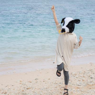 砂浜で元気いっぱいの牛ガールの写真