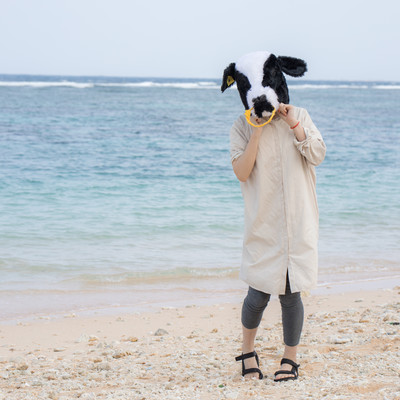 彼女(牛)と宮古島の砂浜でキャッキャモーモーの写真
