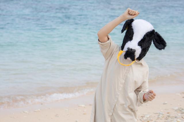 南の島で元気になる牛ガールの写真