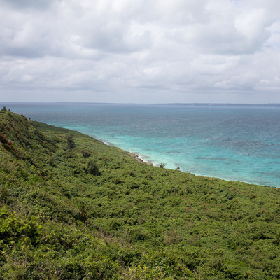 自然豊かな宮古島の写真