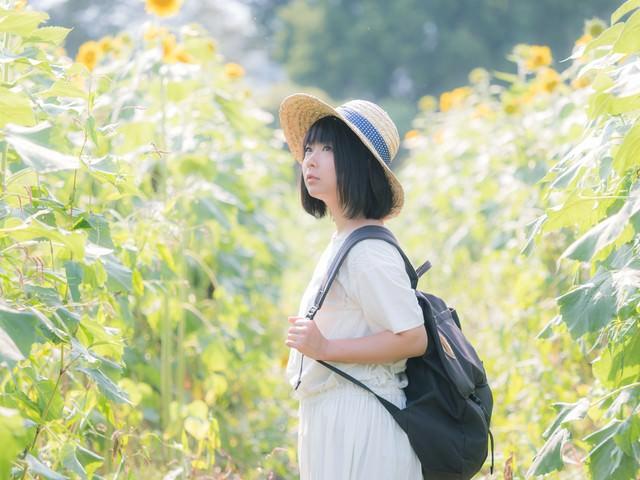 ひまわり畑となつやすみの写真