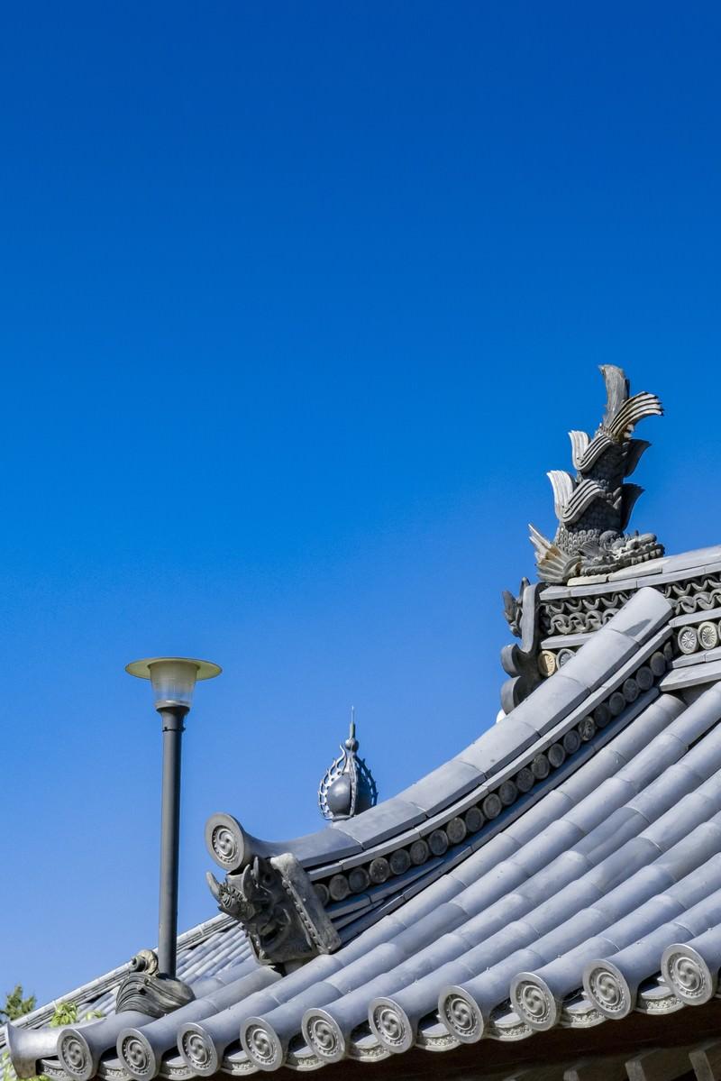 「屋根上の鯱(しゃちほこ)」の写真