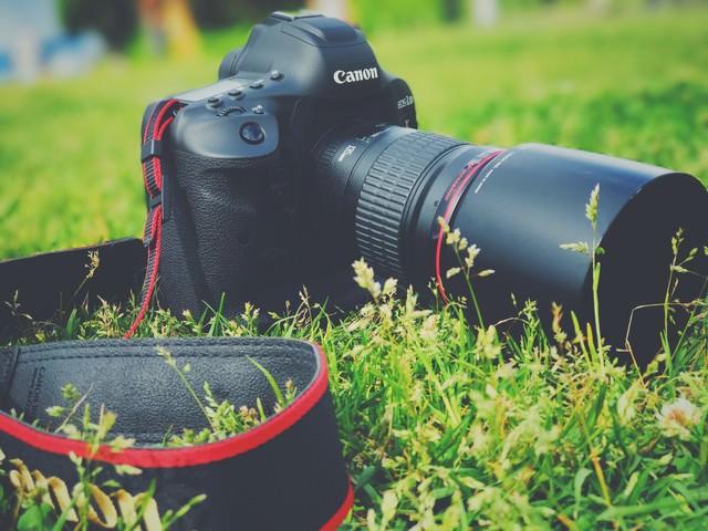 野原とフラッグシップ一眼レフカメラの写真
