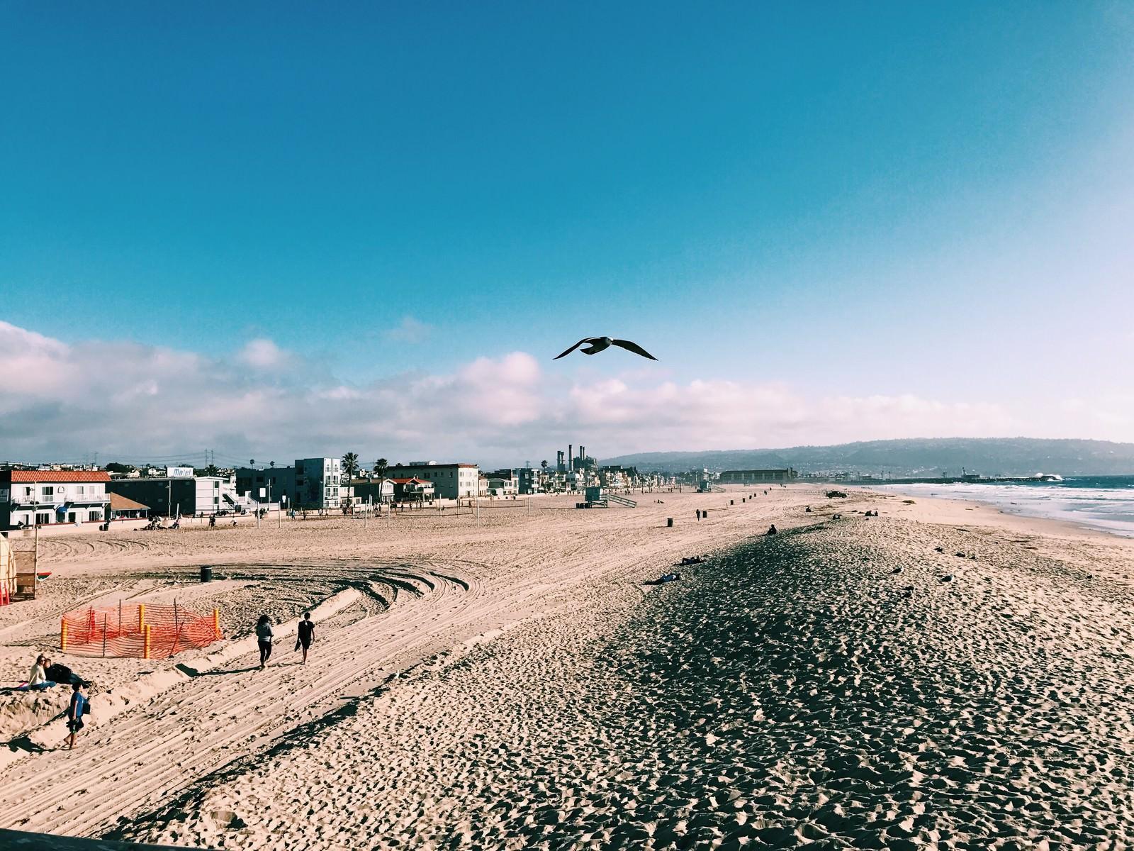 「ハモサビーチ(カリフォルニア)」の写真