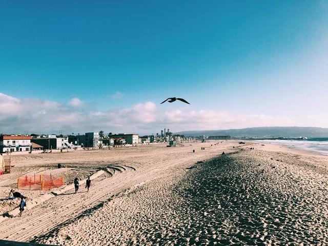 ハモサビーチ(カリフォルニア)の写真