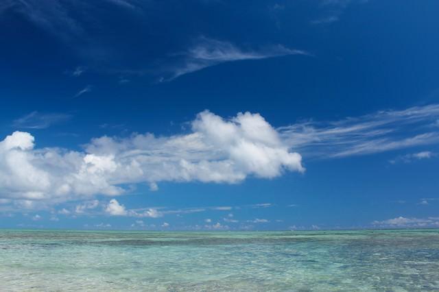 夏の透き通る海の写真
