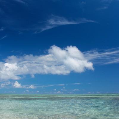 「夏の透き通る海」の写真素材
