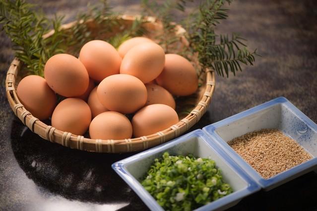 TKG用の卵と薬味のネギとゴマの写真