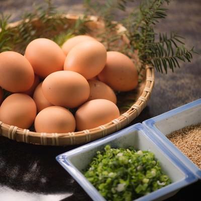 「TKG用の卵と薬味のネギとゴマ」の写真素材