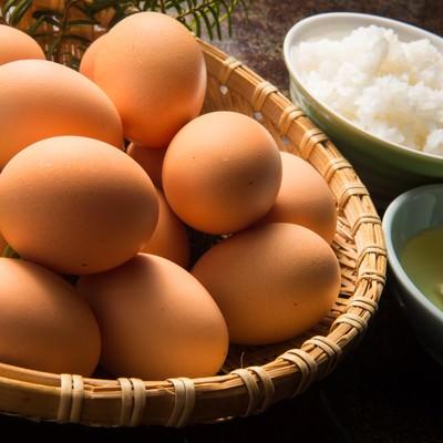 「卵かけご飯が食べ放題(料理宿栄太郎)」の写真素材