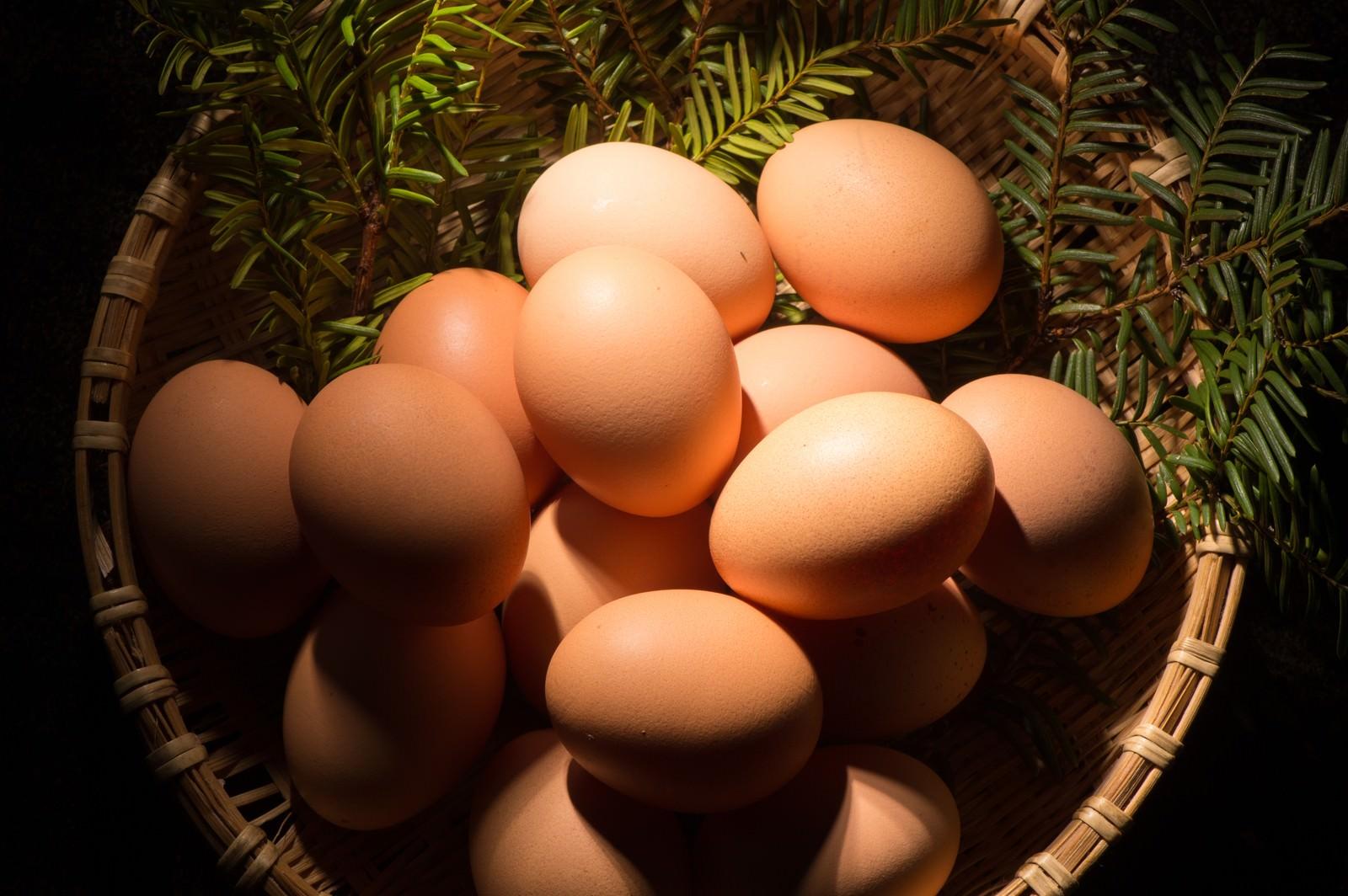 「卵かけご飯との相性が最高の「さくらこめたまご(国産)」」の写真