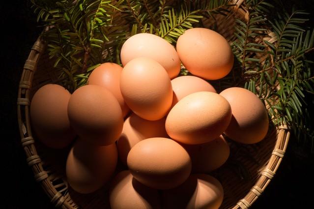 卵かけご飯との相性が最高の「さくらこめたまご(国産)」の写真