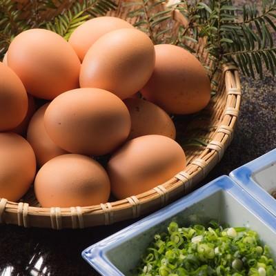 「山盛りの新鮮卵と薬味」の写真素材