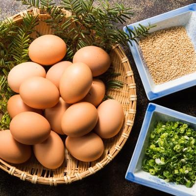 「生卵と薬味とゴマのTKGセット」の写真素材