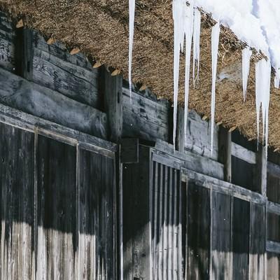 「合掌造りの茅葺屋根にできる巨大なつらら」の写真素材