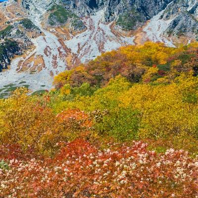 「9月の紅葉シーズンピークの涸沢カール」の写真素材