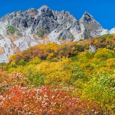 「紅葉に彩られた涸沢の先にあるザイテングラードと穂高」の写真素材