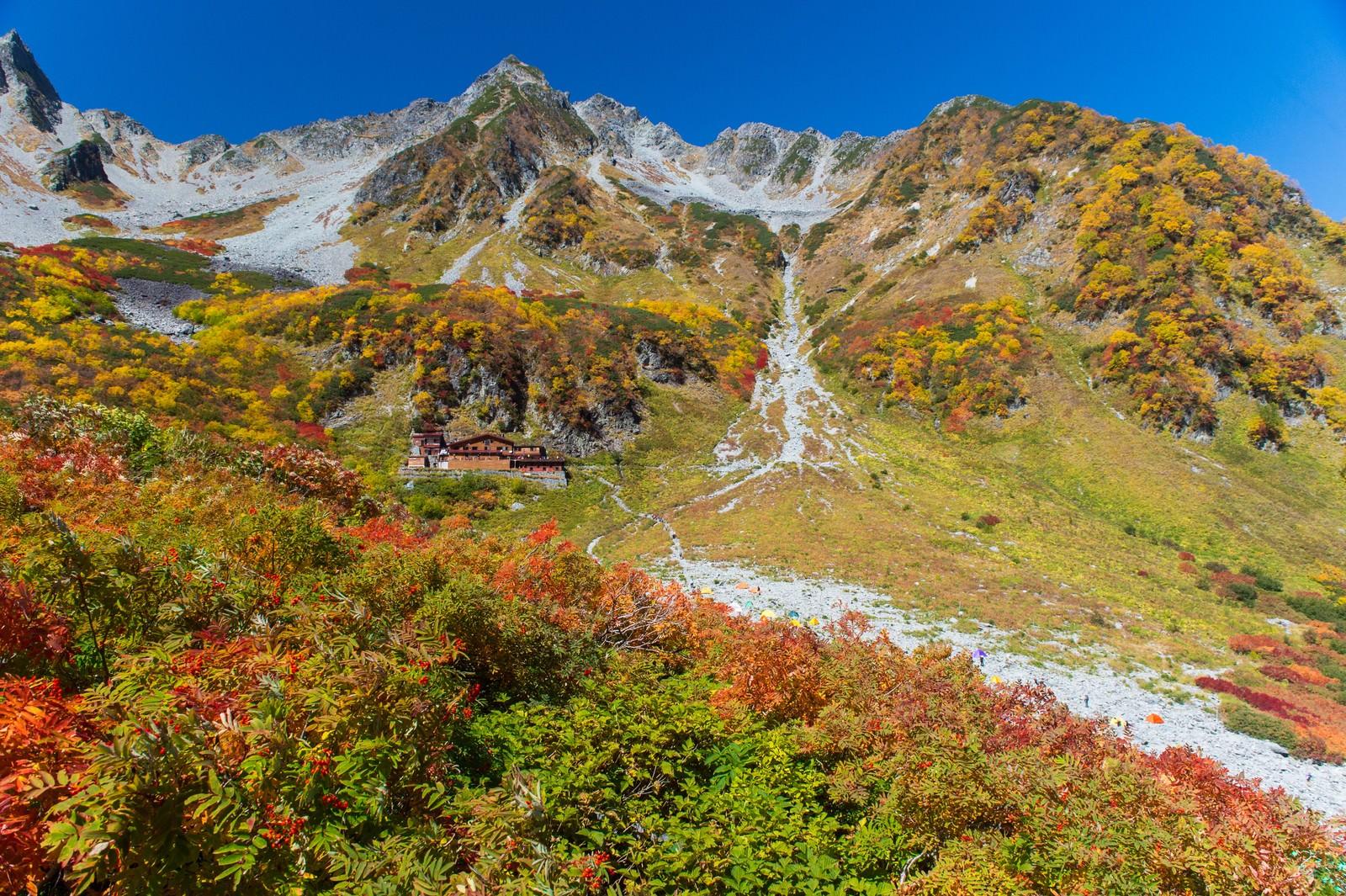 「紅葉ピークの涸沢小屋と北穂高岳」の写真