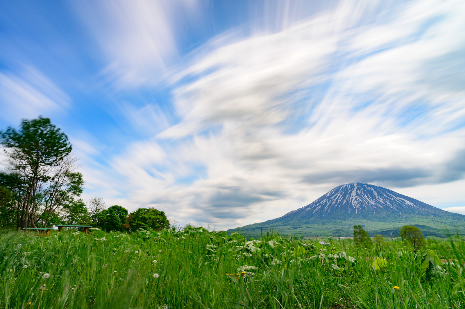 「草原から望む後方羊蹄山(しりべしやま)」の写真