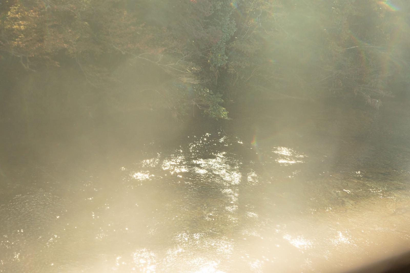 「靄がかる湖面に反射する日の光」の写真