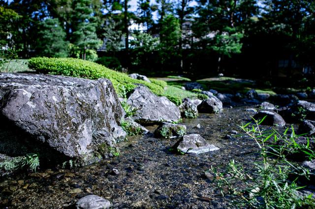 日本庭園にある川の写真