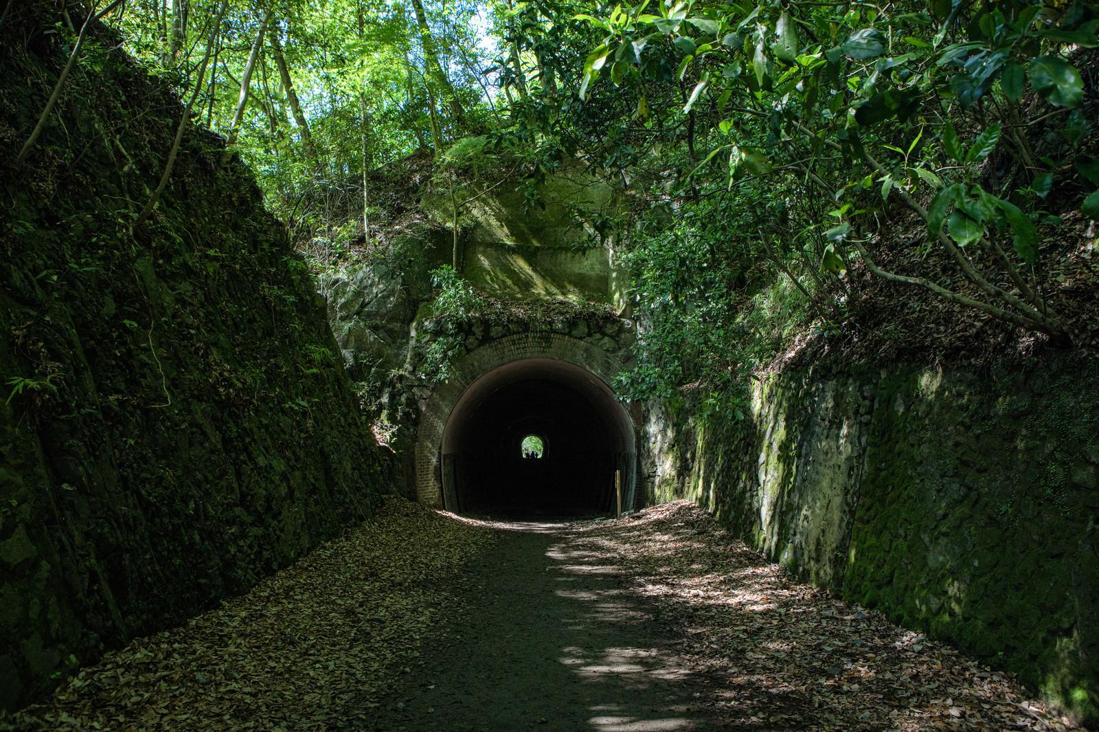 「ハイキングコースから見たトンネル(JR福知山線廃線敷)」の写真