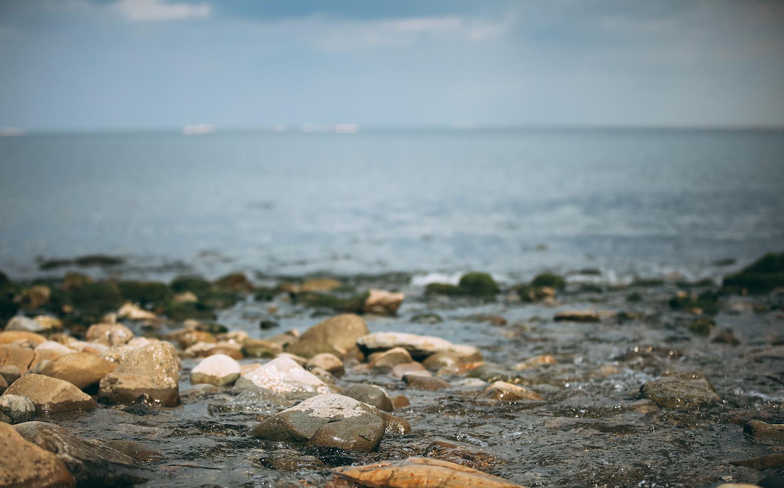 「波打ち際と湿った石、そして海」の写真