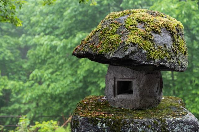 苔の石灯籠の写真