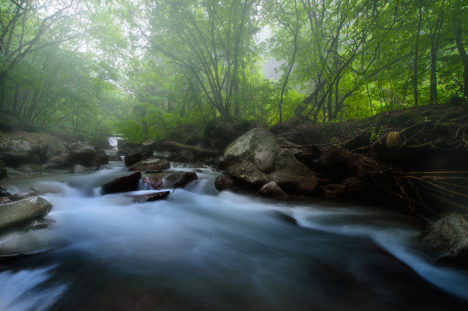 「横谷渓谷の静かに流れる川」の写真